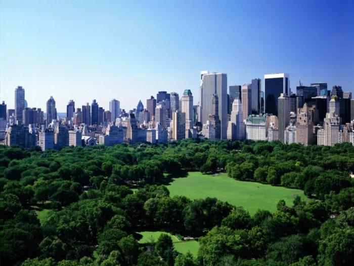 central-park-new-york-city (1)